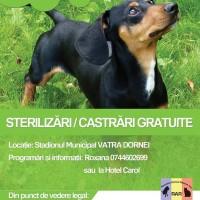 afis_sterilizari
